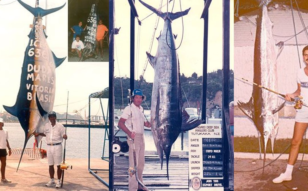 Top 5 largest Marlin ever caught