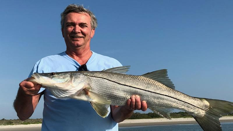Snook Migratory Habits